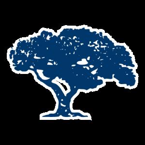 OKFCU Tree Icon