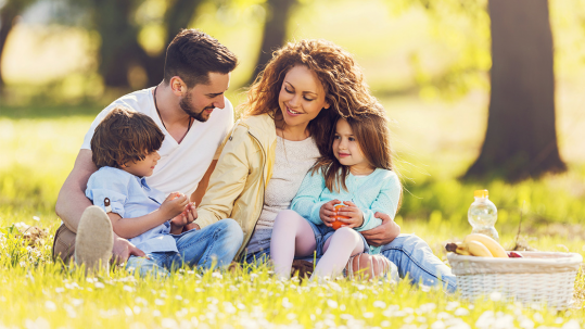Family of four having a picnic in a field